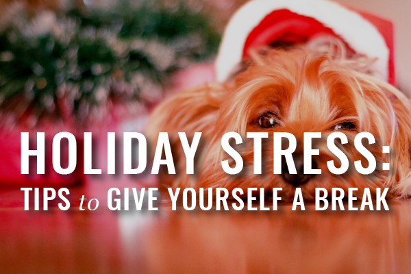 Webinars For Busy Lawyers Holiday Stress