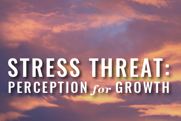 Stress On Lawyers: Threat Perception + Growth Mindset