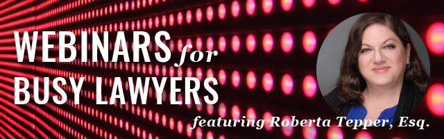 rows of lighted red dots and bio photo of roberta tepper
