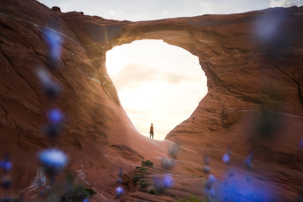 A Hiker Far Off In The Sunlit Middle Of An Arch With Purple Flowers Out Of Focus In Foreground