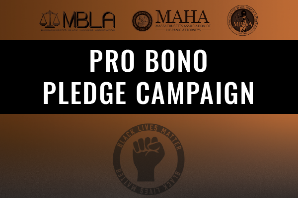Open Until February 2021: Pro Bono Pledge Campaign - Walk In Solidarity For Social Change